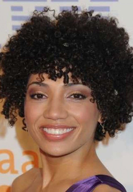 Short Natural Curly African American Hair